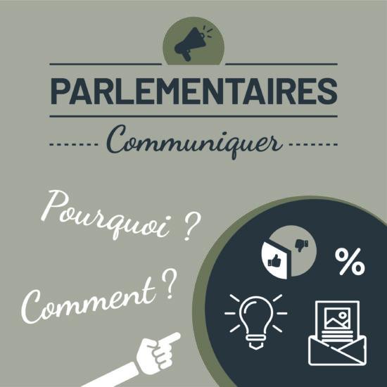 Infographie communication politique © Perfekt !